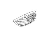 Lincoln Town Car Grille - 6W1Z-8200-AA